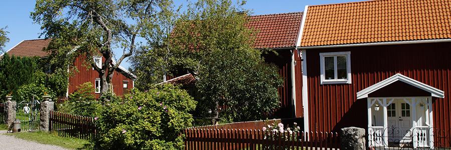 7 consejos para el mantenimiento de tu casa en verano